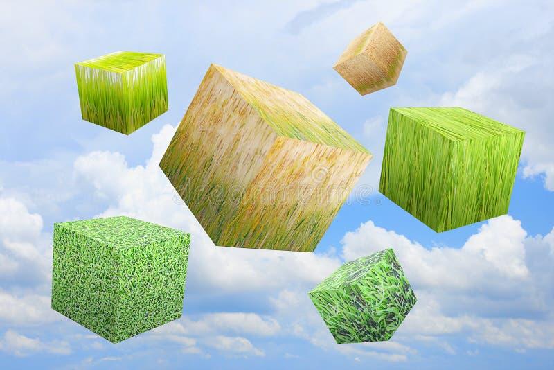 небо травы коробки стоковые изображения rf