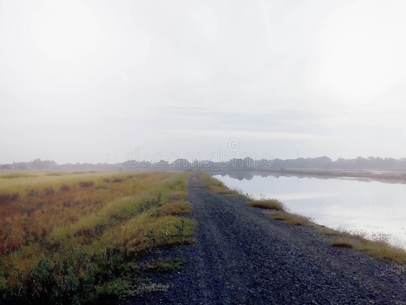 Небо утра солнце поднимает с туманом стоковое изображение rf