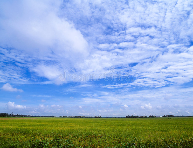 небо чудесное стоковое изображение