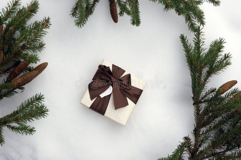 небо klaus santa заморозка рождества карточки мешка Санта с подарком в рамке елевой ветви с красными шариками, на предпосылке меш стоковое изображение