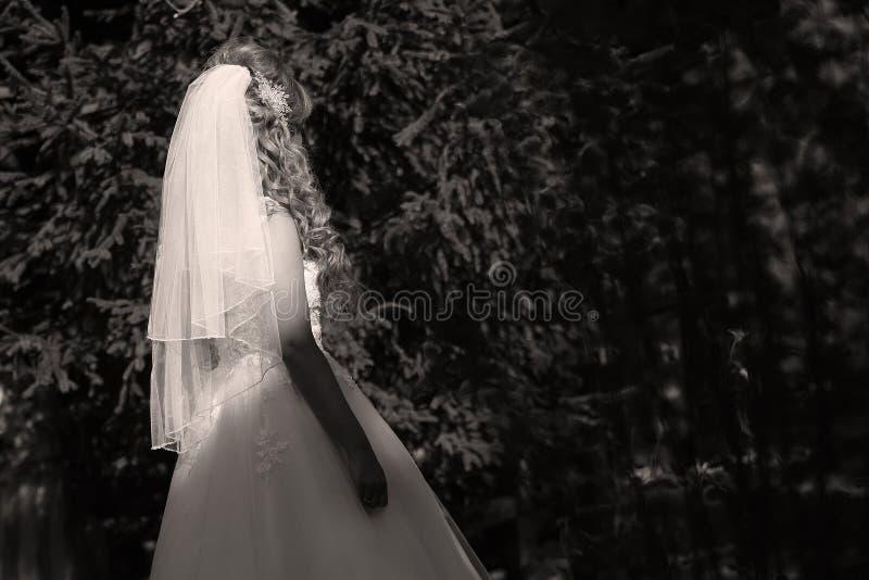 Невеста гуляя в парк стоковая фотография rf