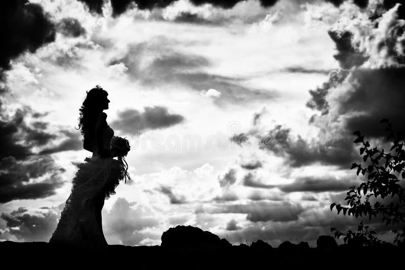 Download невеста напольная стоковое изображение. изображение насчитывающей яркое - 41659417
