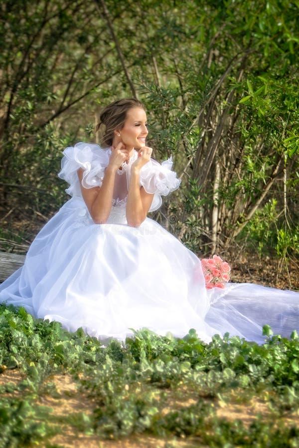 Невеста смотрит к будущему стоковое изображение