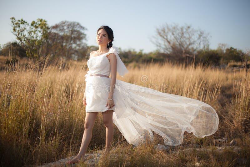 Невеста стоя в луге стоковая фотография
