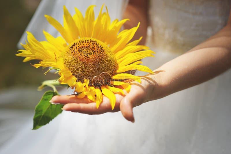 Невеста с солнцецветом стоковое изображение rf