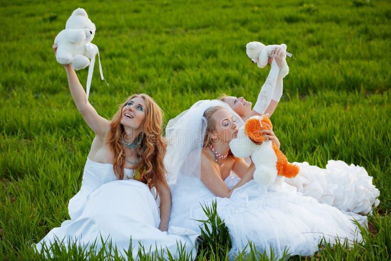 невесты молодые стоковые изображения