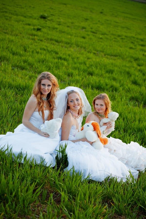 невесты молодые стоковая фотография