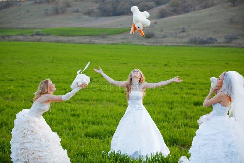 невесты молодые стоковые фото