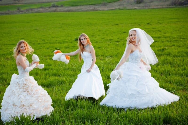 невесты молодые стоковое изображение