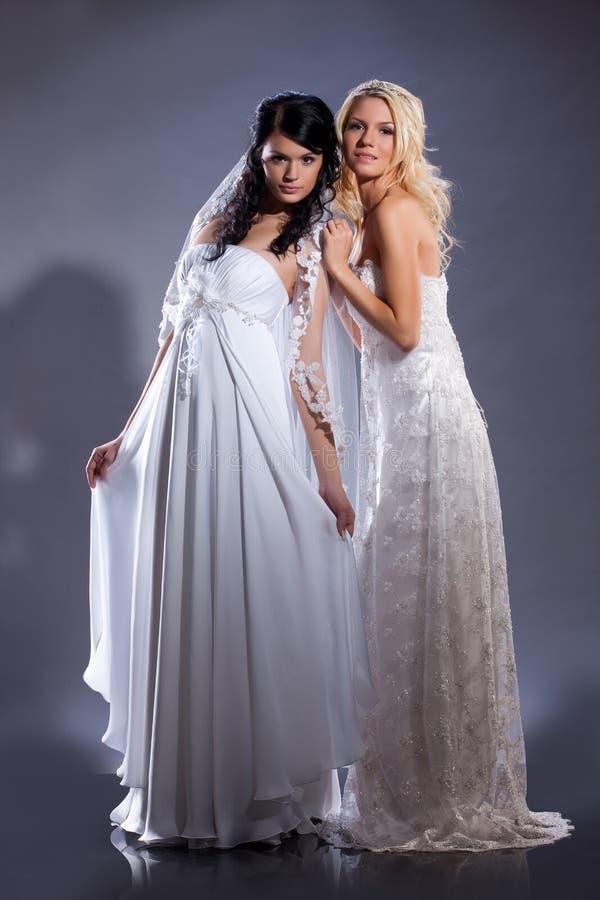 невесты молодые стоковое изображение rf