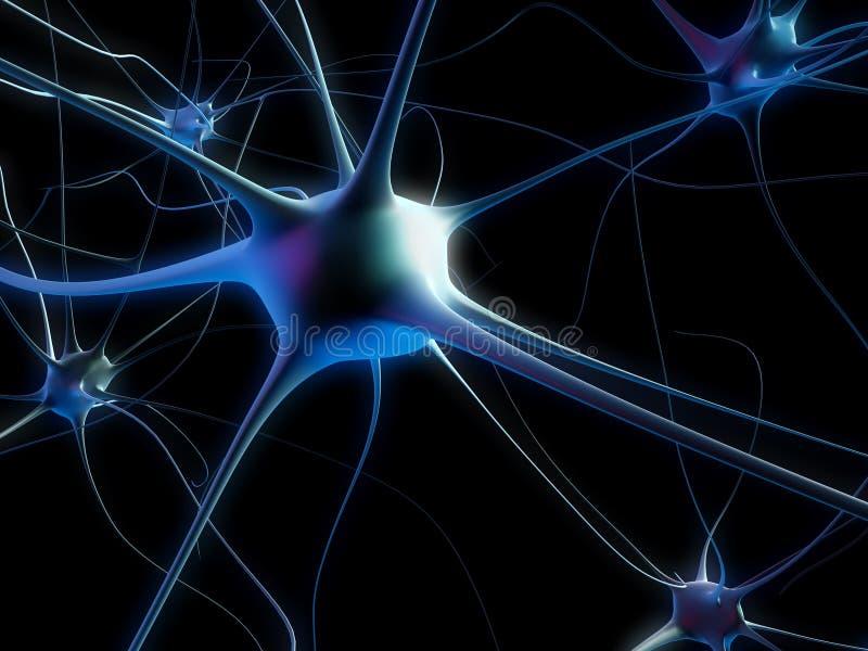 неврон клетки иллюстрация вектора
