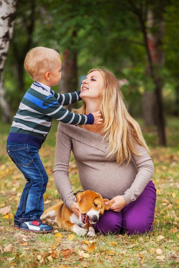 Download Нежная сцена семьи в парке осени Стоковое Фото - изображение насчитывающей счастье, ландшафт: 33732042