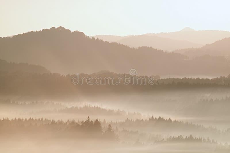 Нежный туманный ландшафт в холмистой стране Осень начинает Ретро фильтр стиля Апельсин тонизируя влияние стоковые изображения