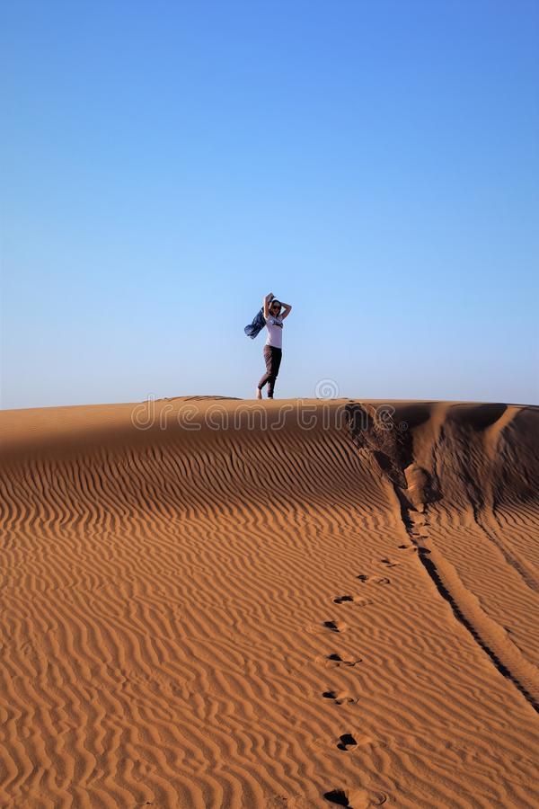 Незабываемая красота пустыня стоковые изображения