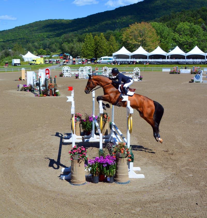 Неизвестный всадник на лошади стоковые фотографии rf