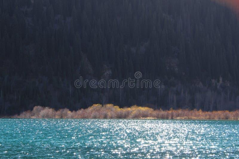 Неимоверный красивый цвет ` s воды с солнечным светом на поверхности стоковые изображения rf