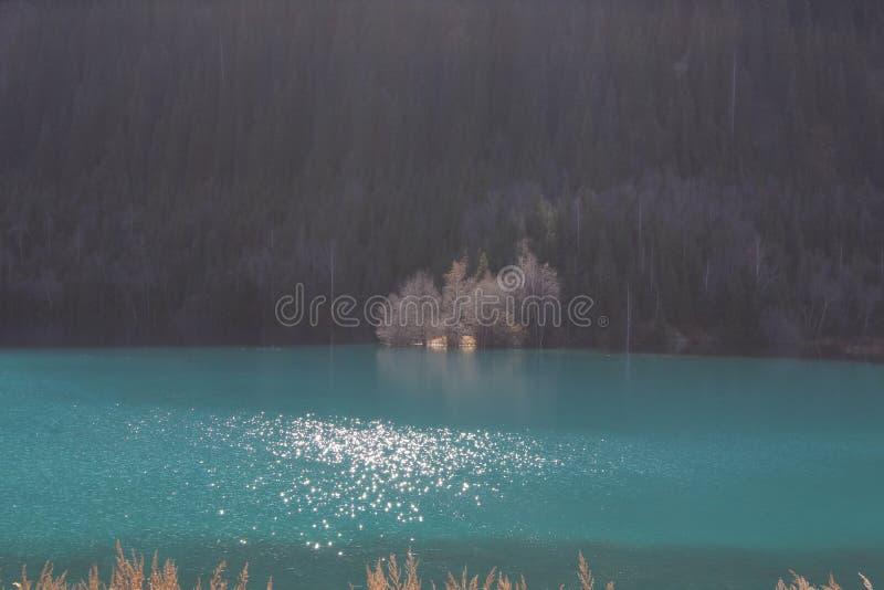 Неимоверный красивый цвет ` s воды с солнечным светом на поверхности стоковые фото