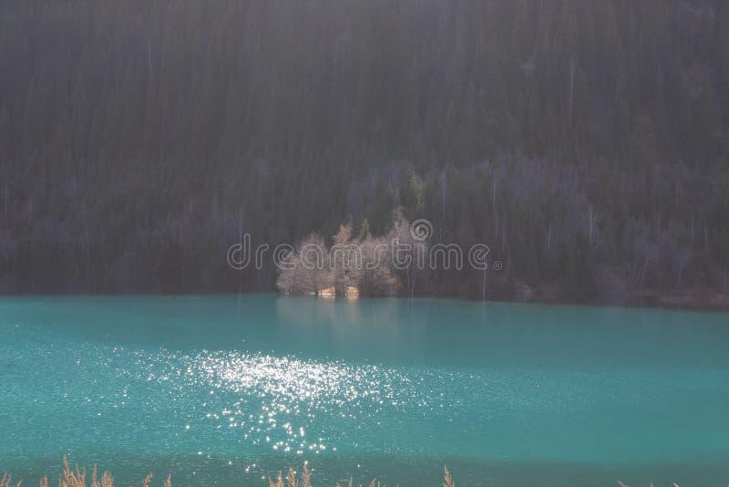 Неимоверный красивый цвет ` s воды с солнечным светом на поверхности стоковое изображение rf