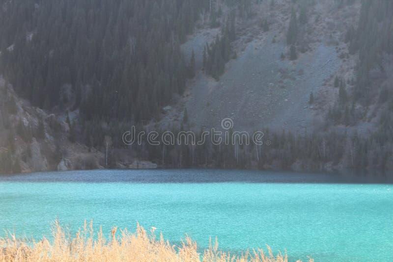 Неимоверный красивый цвет ` s воды с солнечным светом на поверхности стоковые фотографии rf