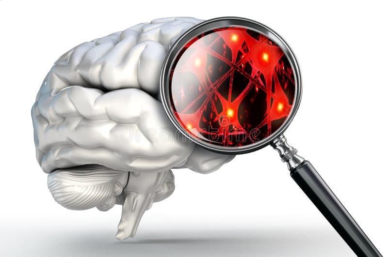 Нейроны закрывают вверх на лупе и человеческом мозге иллюстрация вектора