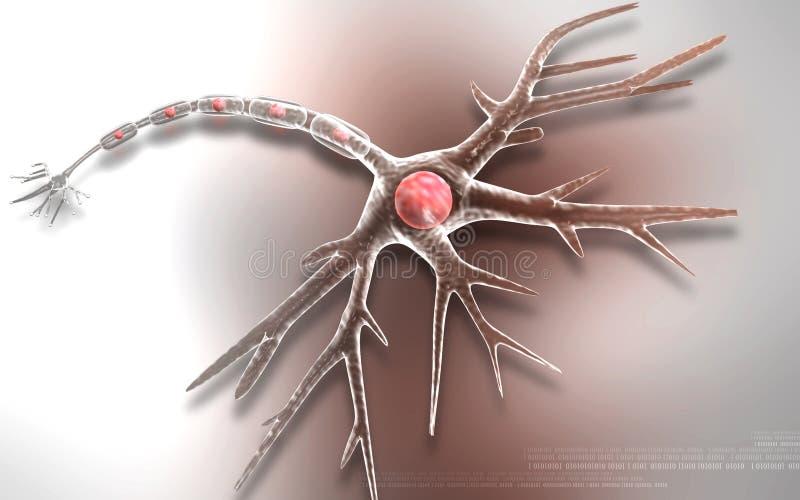 Нейрон иллюстрация вектора