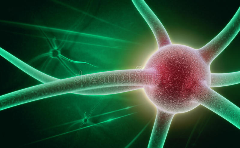 Нейрон стоковое изображение