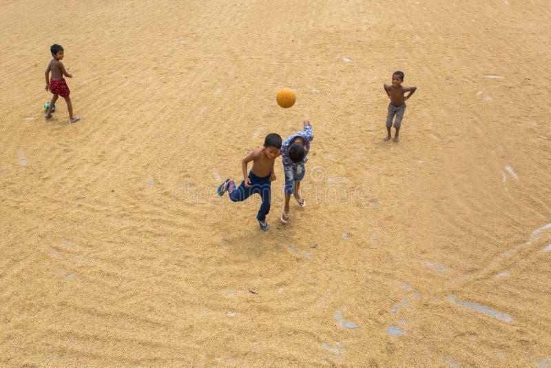 Некоторые мальчики играя на сушить рисовые поля стоковое фото