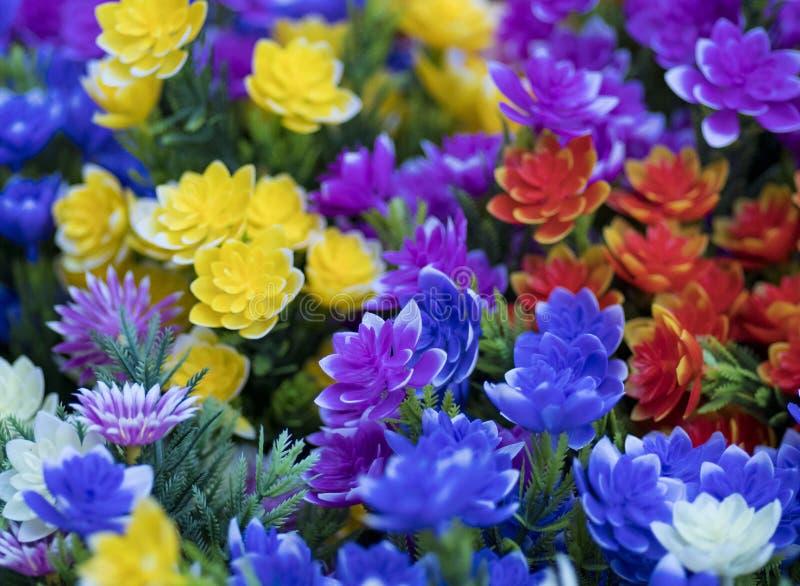 Некоторые цветки в саде стоковое изображение rf
