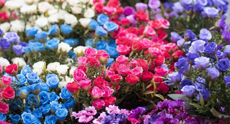 Некоторые цветки в саде стоковое фото rf