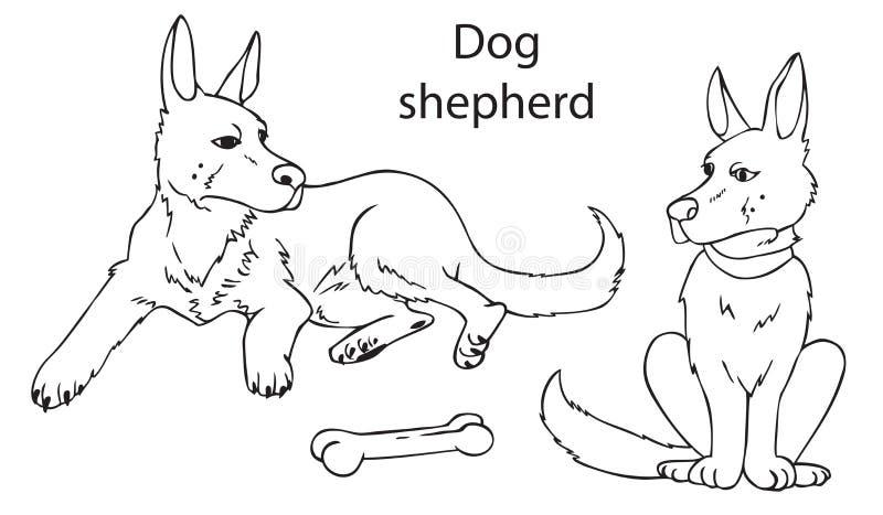Немецкая овчарка собаки на белой предпосылке бесплатная иллюстрация