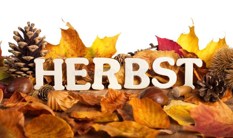 Немецкое слово на осень стоковое изображение