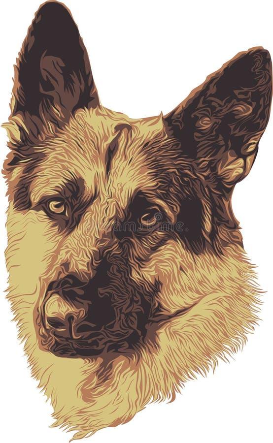 немецкое shepard портрета стоковая фотография rf
