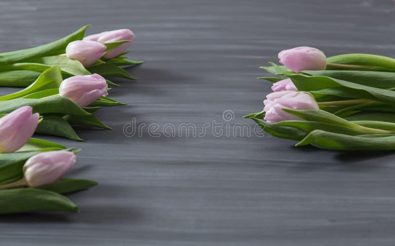 Немногие розовые тюльпаны цветут на темной поверхности chalcboard Букет на предпосылке конспекта нерезкости с космосом экземпляра стоковые фото