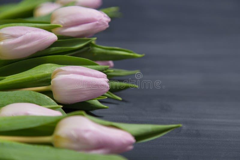 Немногие розовые тюльпаны цветут на темной поверхности chalcboard Букет на предпосылке конспекта нерезкости с космосом экземпляра стоковое фото rf