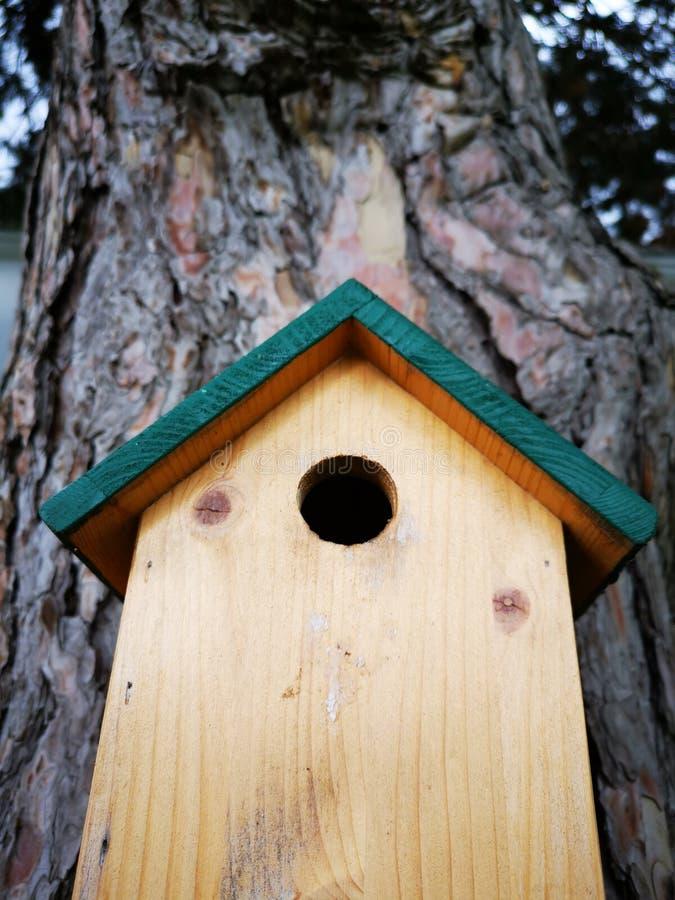 Немногое деревянный дом для птиц в дереве стоковое фото