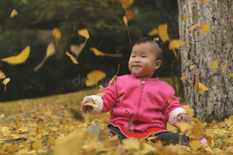 Немногое дочь на осени, золотой падать листьев стоковая фотография