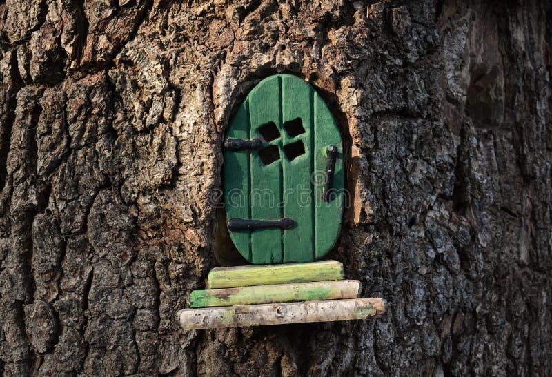 Немногое зеленая дверь феи/pixie в стволе дерева стоковые изображения