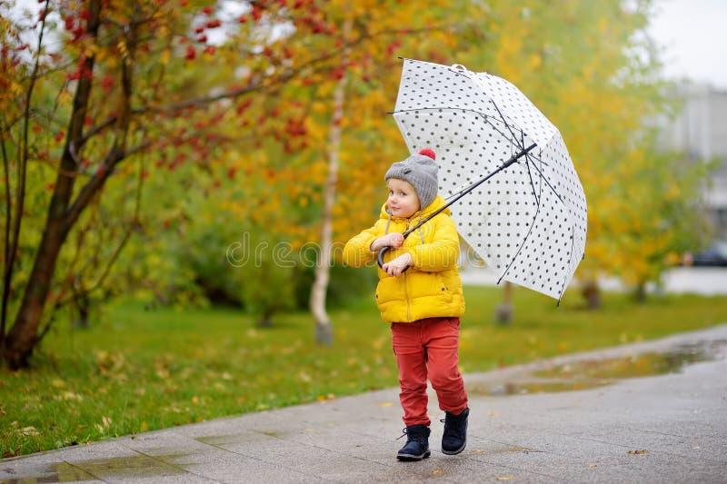 Немногое ребенок идя в парк города на дождливом дне осени Мальчик малыша с зонтиком для погоды падения стоковая фотография