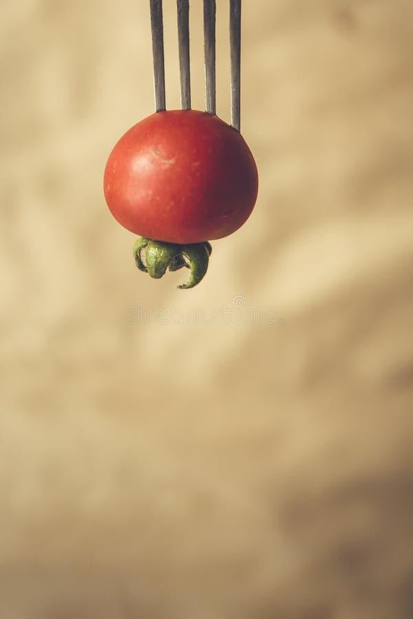 Немногое томат вишни на вилке стоковое фото rf
