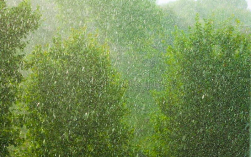 Ненастная внешняя текстура предпосылки зеленого цвета окна стоковая фотография