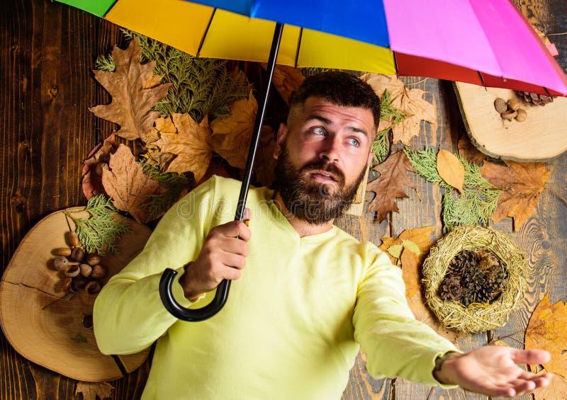 Ненастная концепция прогноза погоды Атрибуты атмосферы падения Положение человека бородатое на деревянной предпосылке с апельсино стоковые фотографии rf