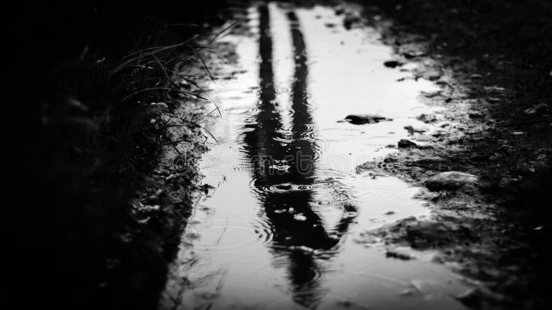 Ненастное отражение стоковое фото rf