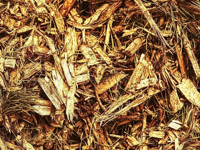 Ненужные обломоки лесопилки и расшивы Стог сырья стоковые фотографии rf