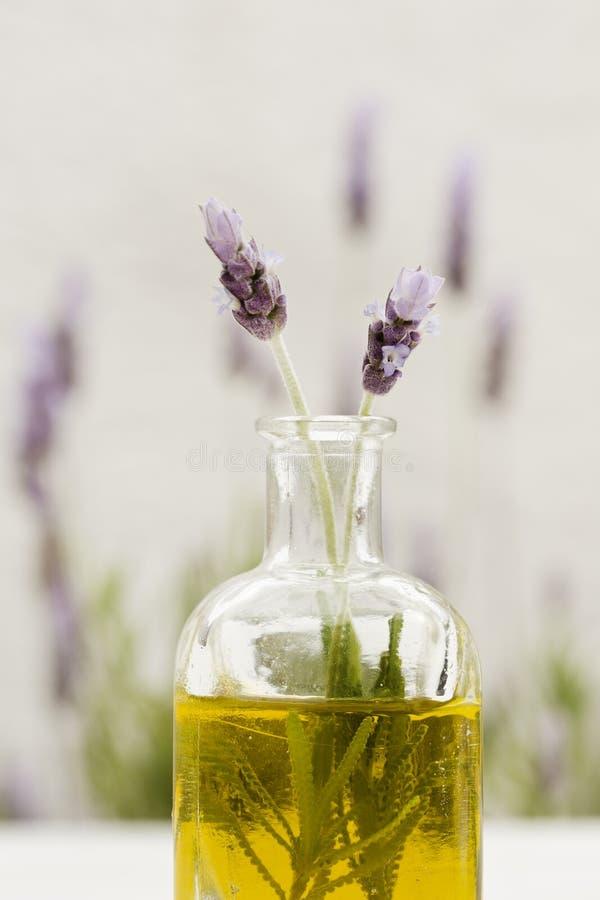 необходимое масло лаванды цветков стоковое фото