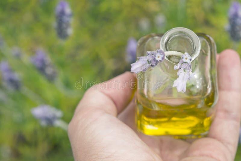 необходимое масло лаванды цветков стоковые изображения