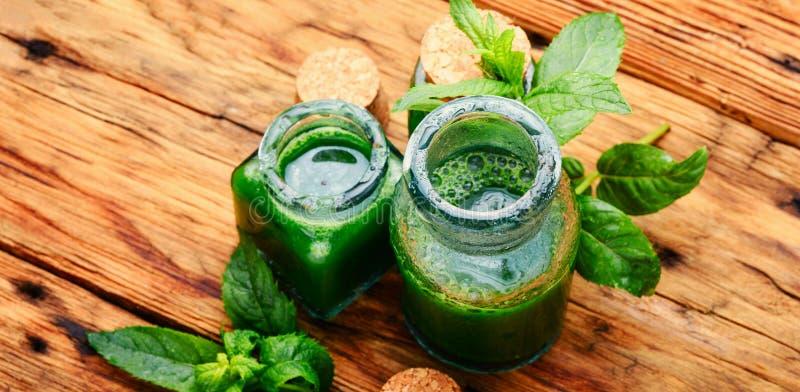 Необходимое масло мяты с зелеными листьями стоковые фото