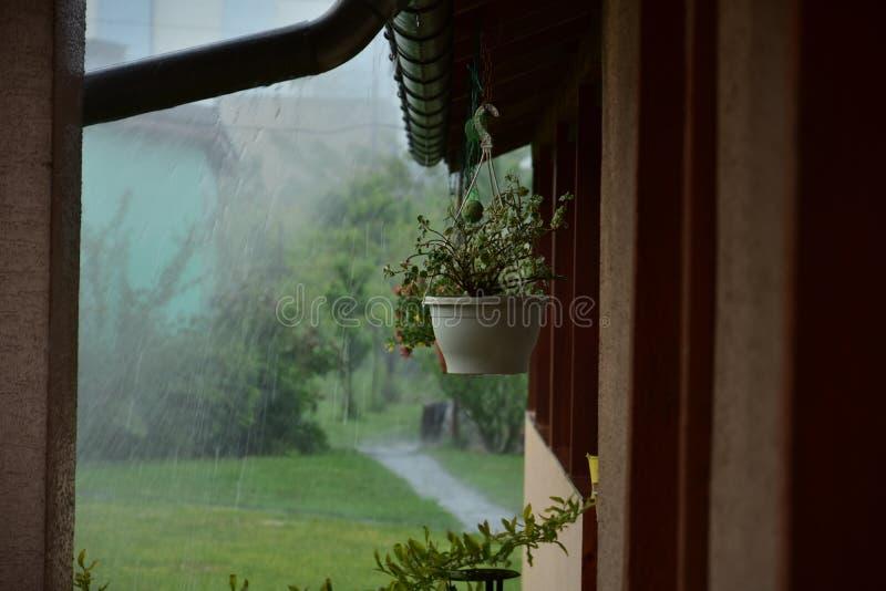 Неожиданный hailstorm стоковая фотография