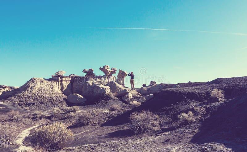 Неплодородные почвы Bisti стоковое изображение