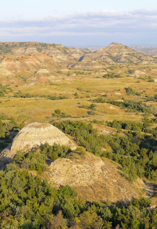 неплодородные почвы roosevelt theodore стоковое фото