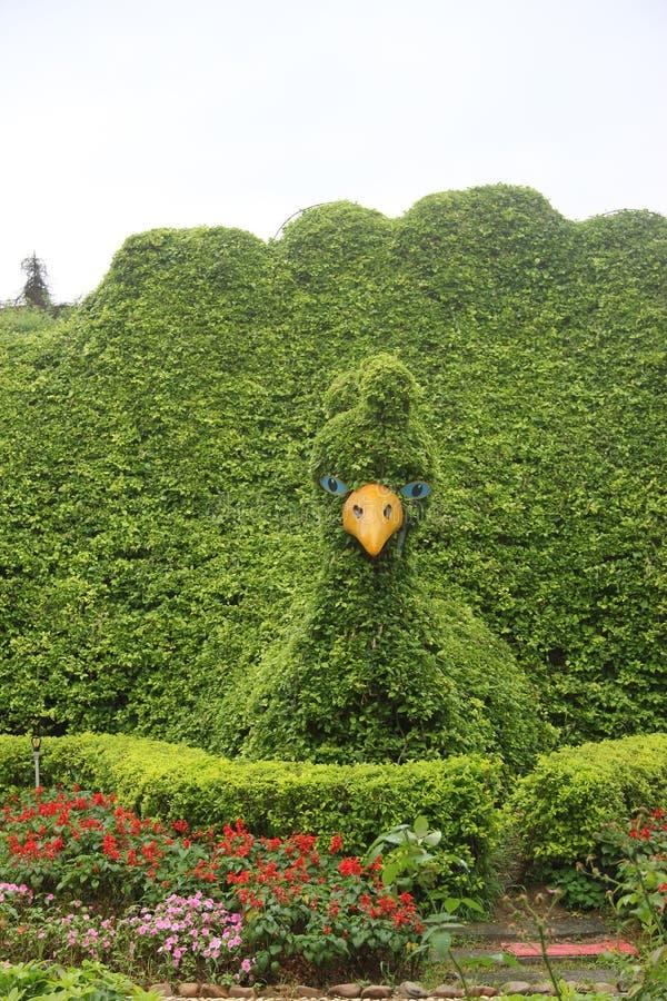 Непревзойдённый садовничать стоковое изображение rf